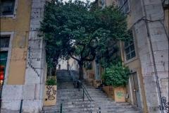 Fa a lépcsőn