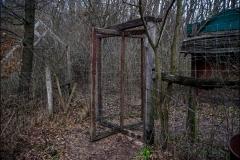 Forgóajtó az erdőben